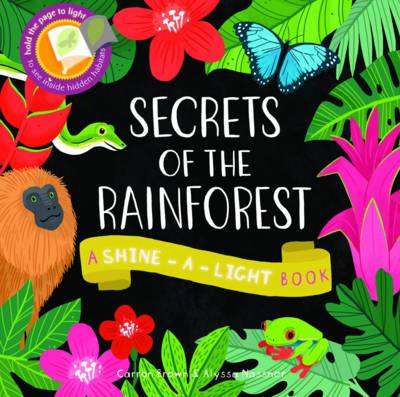Secrets of the Rainforest: A Shine-a-Light Book - Shine-A Light Books (Hardback)
