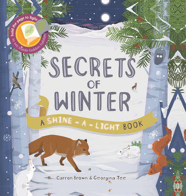 Secrets of Winter - Shine-A Light Books (Hardback)