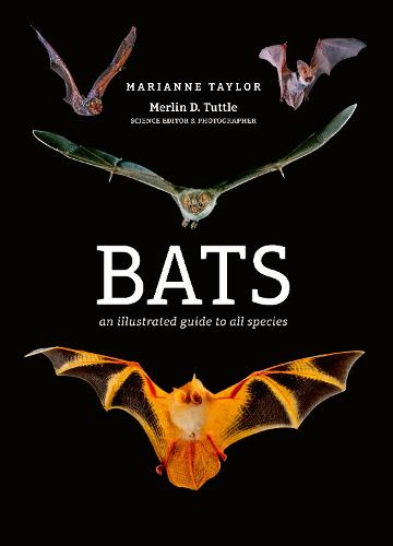 Bats: An illustrated guide to all species (Hardback)
