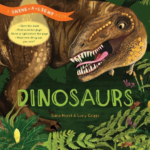 Shine a Light: Dinosaurs: A shine-a-light book - Shine-A-Light (Hardback)