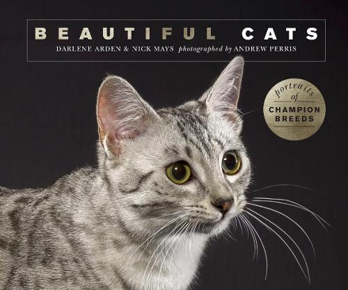 Beautiful Cats: Portraits of champion breeds - Beautiful Animals (Paperback)