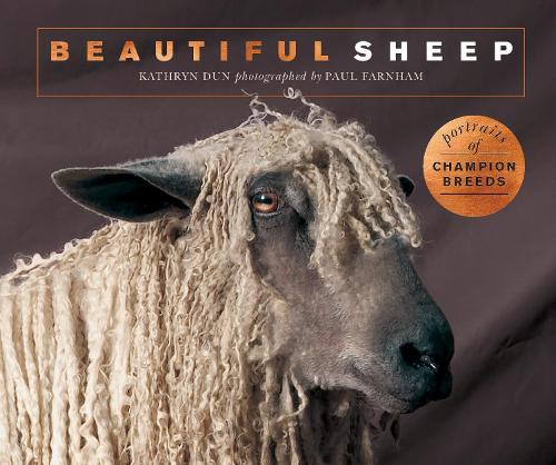Beautiful Sheep: Portraits of champion breeds - Beautiful Animals (Paperback)