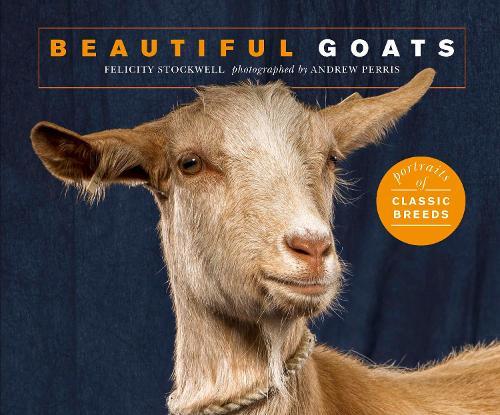 Beautiful Goats: Portraits of champion breeds - Beautiful Animals (Paperback)