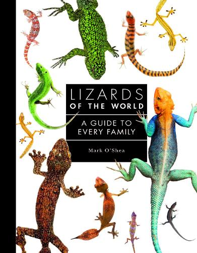Lizards of the World: A Guide to Every Family (Hardback)