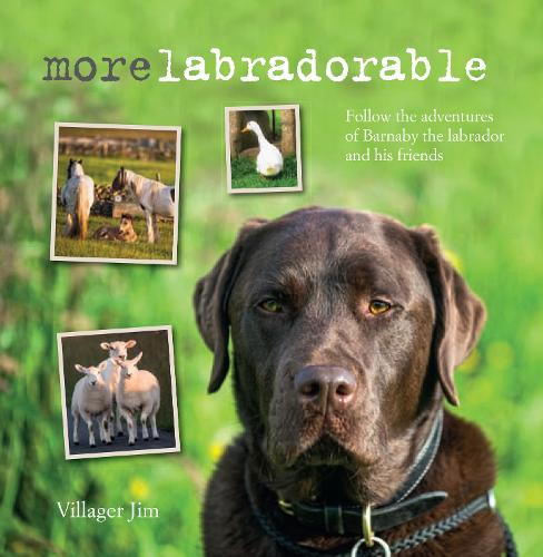Morelabradorable: Follow the Adventures of Barnaby the Labrador and His Friends (Hardback)
