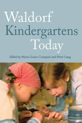 Waldorf Kindergartens Today (Paperback)