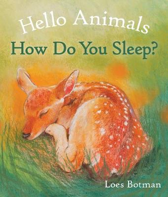 Hello Animals, How Do You Sleep? - Hello Animals (Board book)