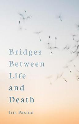 Bridges Between Life and Death (Paperback)