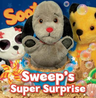 Sweep's Super Surprise (Hardback)