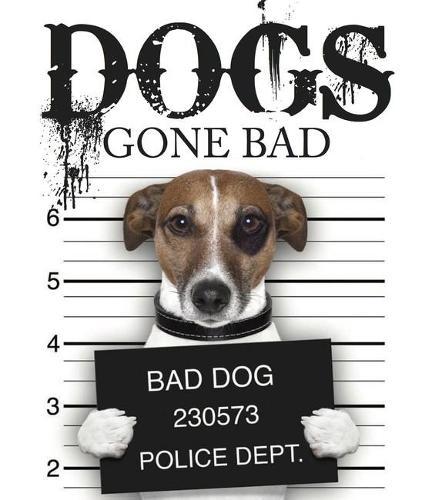 Dogs Gone Bad (Hardback)