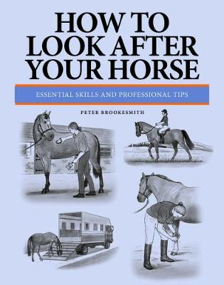 How To Look After Your Horse: Essential Skills and Professional Tips (Paperback)