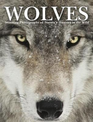 Wolves: Stunning Photographs of Nature's Hunters in the Wild (Hardback)