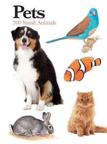 Pets: 300 Small Animals - Mini Encyclopedia (Paperback)