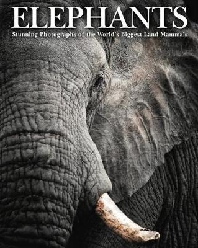 Elephants: Stunning Photographs of the World's Biggest Land Mammals - Animals (Hardback)