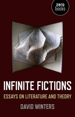 Infinite Fictions: Essays on Literature and Theory (Paperback)