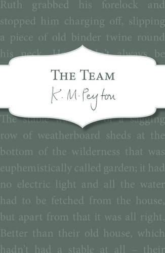 The Team (Paperback)