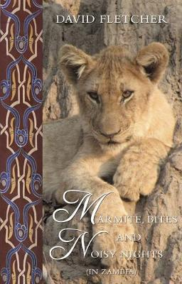 Marmite, Bites and Noisy Nights (in Zambia): Brian's World (Paperback)