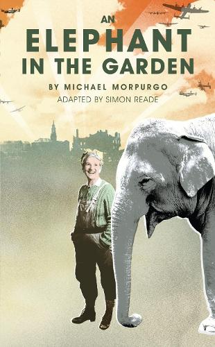 An Elephant in the Garden (Paperback)