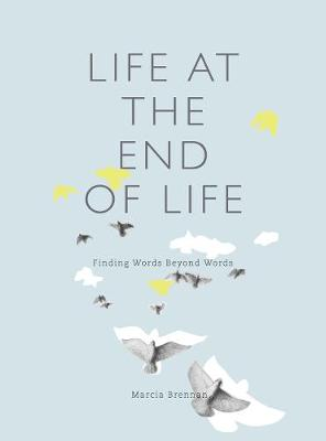 Life at the End of Life: Finding Words Beyond Words (Paperback)