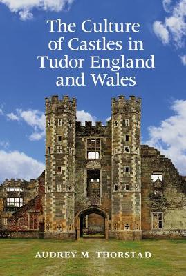 The Culture of Castles in Tudor England and Wales (Hardback)