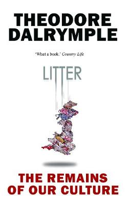 Litter: The Remains of Our Culture (Paperback)