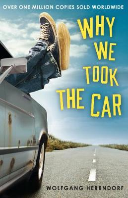 Why We Took the Car (Paperback)
