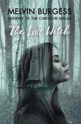 The Lost Witch (Hardback)
