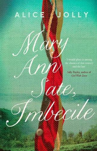 Mary Ann Sate, Imbecile (Hardback)