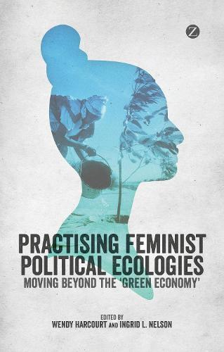 Practising Feminist Political Ecologies: Moving Beyond the 'Green Economy' (Hardback)