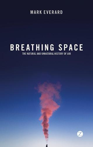 Breathing Space: The Natural and Unnatural History of Air (Paperback)