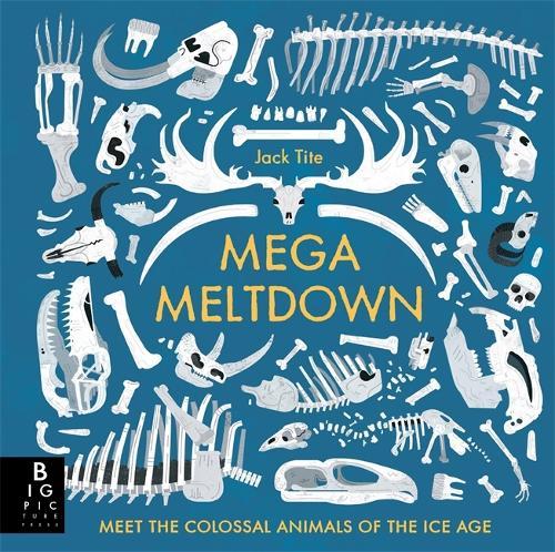 Mega Meltdown (Hardback)