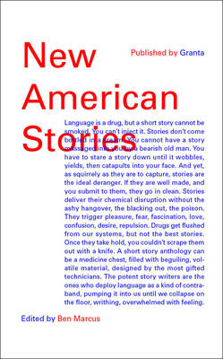 New American Stories (Paperback)