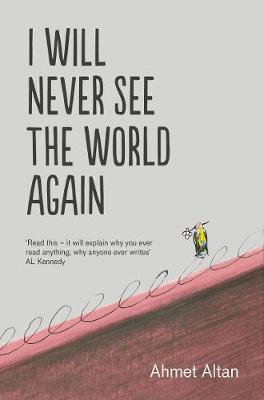 I Will Never See the World Again (Paperback)