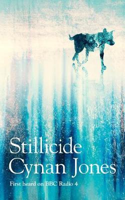 Stillicide (Hardback)