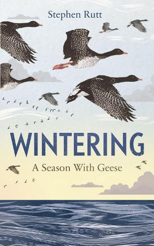 Wintering: A Season With Geese (Hardback)