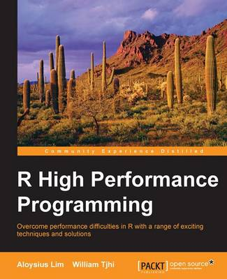 R High Performance Programming (Paperback)