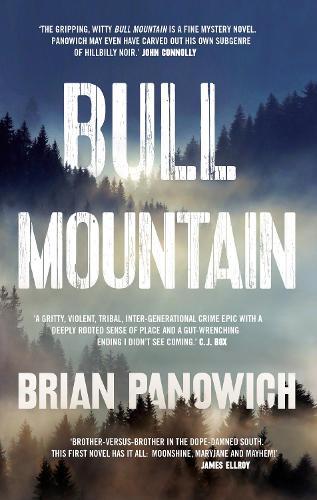 Bull Mountain (Hardback)