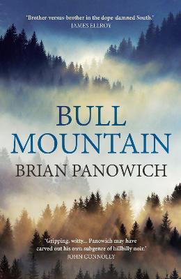Bull Mountain (Paperback)