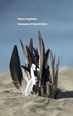Measures of Expatriation (Paperback)