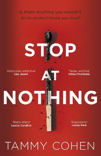 Stop At Nothing (Paperback)
