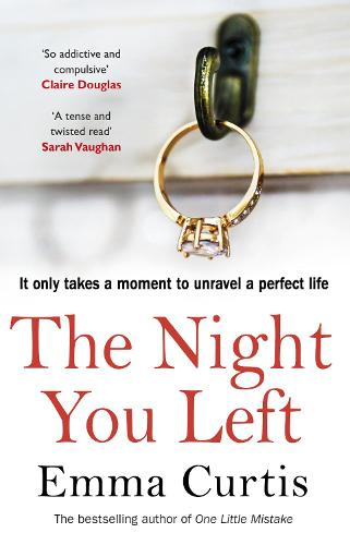 The Night You Left (Paperback)