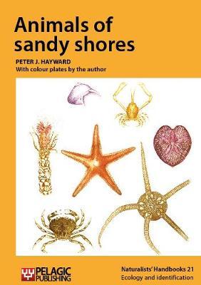 Animals of sandy shores - Naturalists' Handbooks Vol. 21 (Hardback)