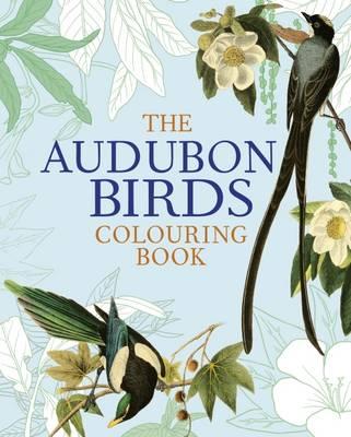 The Audubon Birds Colouring Book (Paperback)