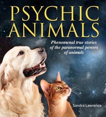 Psychic Animals (Paperback)