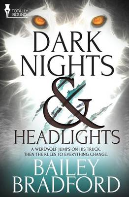 Dark Nights and Headlights (Paperback)