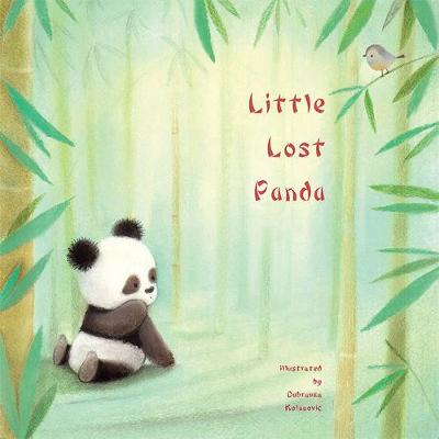 Little Lost Panda - Picture Storybooks (Paperback)