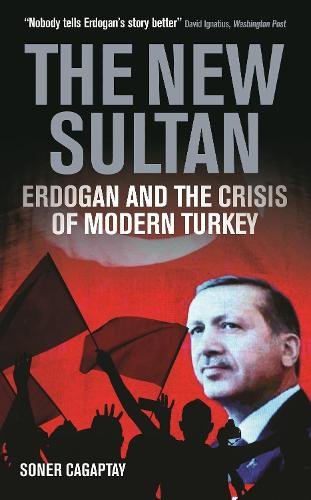 The New Sultan: Erdogan and the Crisis of Modern Turkey (Hardback)