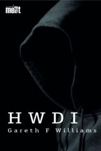 Cyfres Mellt: Hwdi (Pecyn o 15) (Paperback)