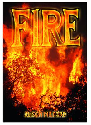 Fire - Wow! Facts (W) (Paperback)