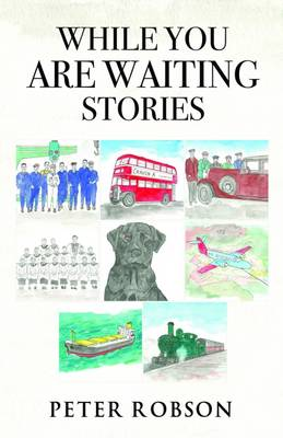 While You are Waiting Stories (Paperback)
